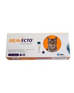 Bravecto Spot-On CHAT 1,2 - 2,8  kg 1 pipette- La Compagnie des Animaux