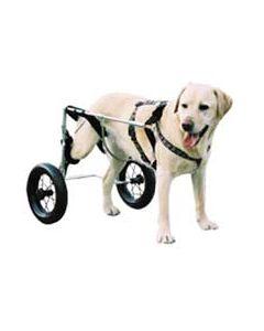 Chariot Canis Mobile pour chien paralysé du train arrière