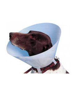 Carcan classique pour chiens et chats - 7,5 cm - La compagnie des animaux