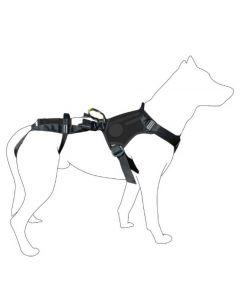 Dimatex SALVATEX Harnais hélitreuillable noir pour chien