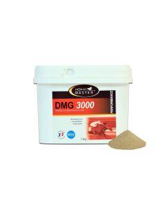 DMG 3000 seau 1.3 kg - La Compagnie des Animaux