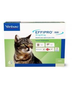 Effipro Duo Chat 1-6 kg 4 pipettes