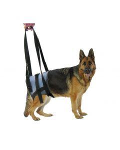 Harnais Handy Canis pour chien paralysé