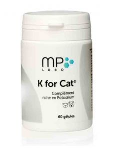 K for Cat 60 gélules