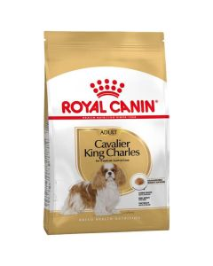 Royal Canin Cavalier King Charles Adult - La Compagnie des Animaux