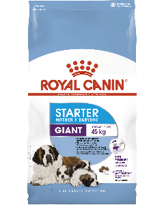 Royal Canin Giant Starter Mother and Babydog - La Compagnie des Animaux