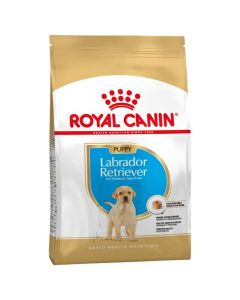 Royal Canin Labrador Junior - La Compagnie des Animaux