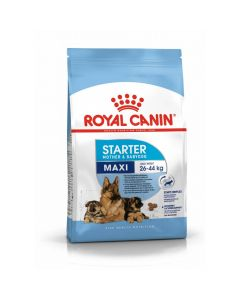 Royal Canin Maxi Starter Mother and Babydog - La Compagnie des Animaux