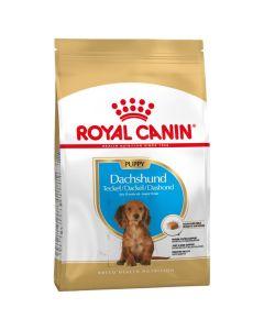 Royal Canin Teckel Junior 1.5 kg - La Compagnie des Animaux