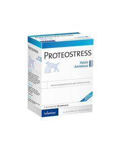 Wamine Proteostress 36 cps