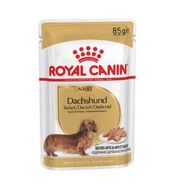Royal Canin Teckel Adult mousse 12 x 85 g