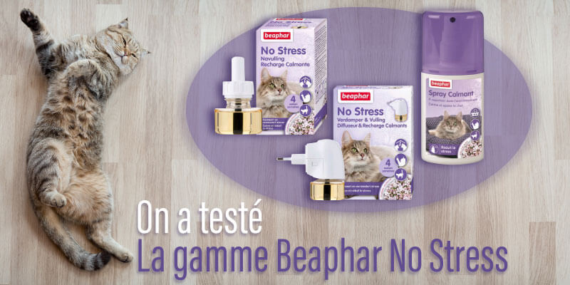 Vous avez testé : No Stress la gamme calmante de Beaphar